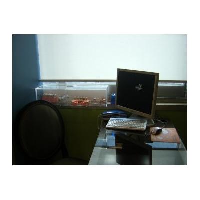 https://cafe2412345.cafe24.com/xe/index.php?document_srl=230